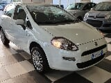 Foto Fiat Punto 1.4 8V 5 porte Natural Power Stree